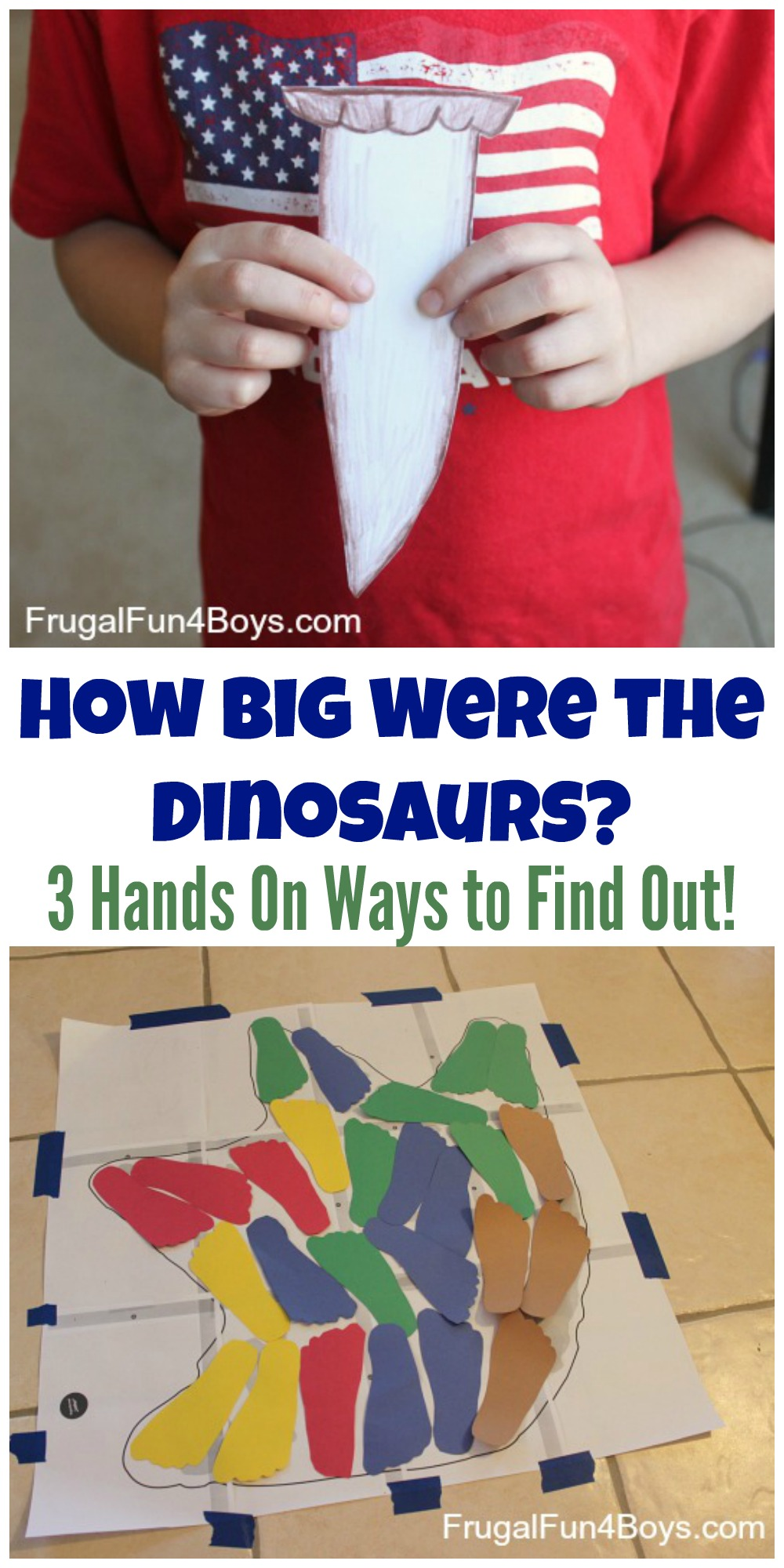 How Big Were the Dinosaurs? Three Hands-on Ways to Find Out!
