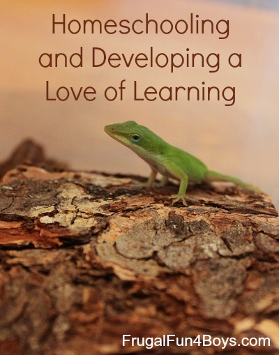 Homeschooling and Developing a Love of Learning