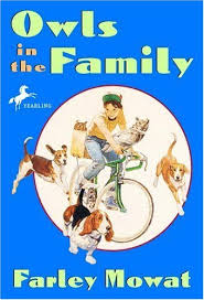 Most beloved read-aloud books for creating family memories