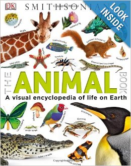 Christmas Gift Ideas that Won't Contribute More Toy Clutter!
