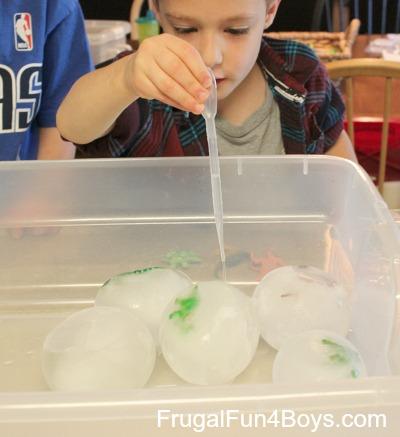 Dinosaur Egg Ice Excavation
