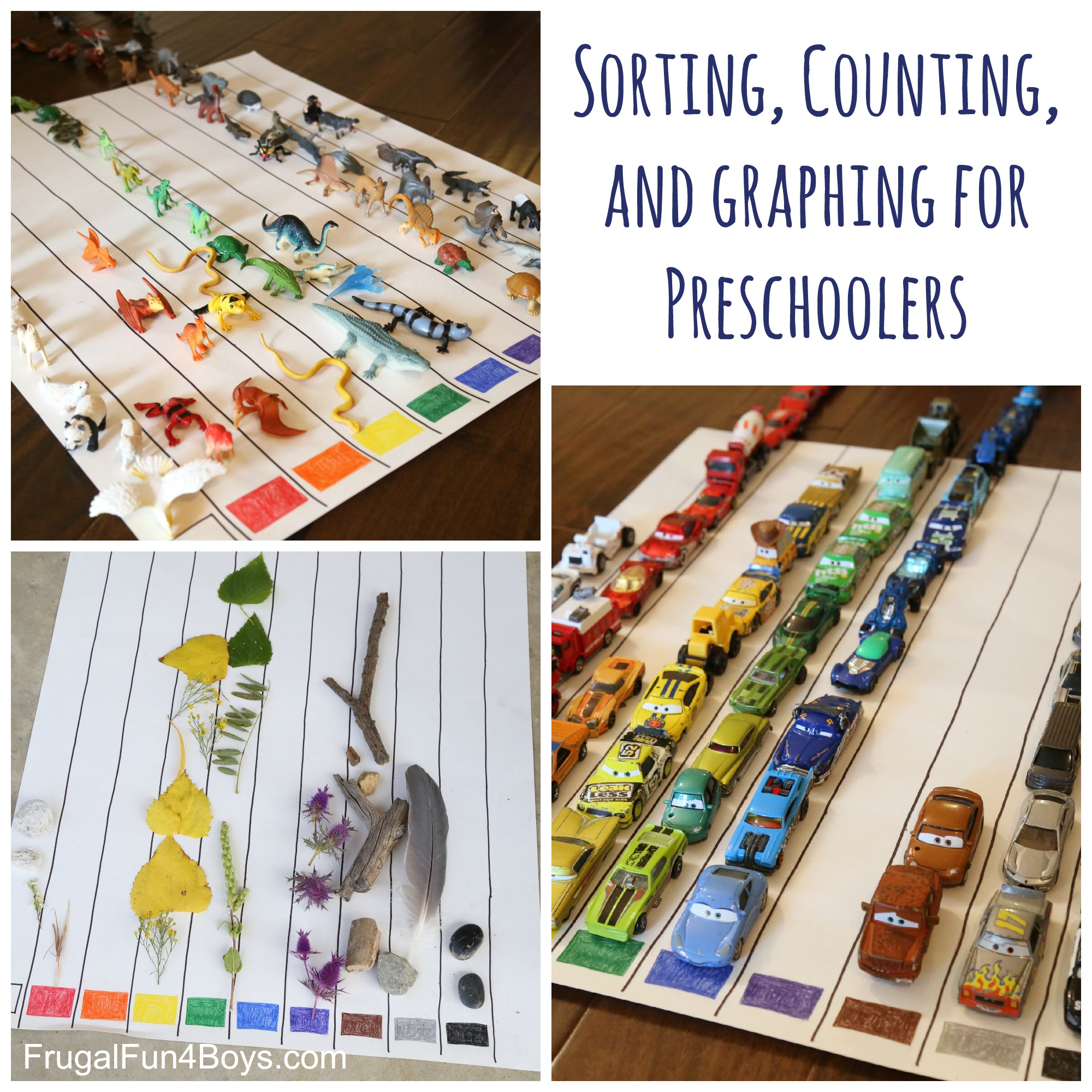 Sorting, Counting, and Graphing for Preschoolers