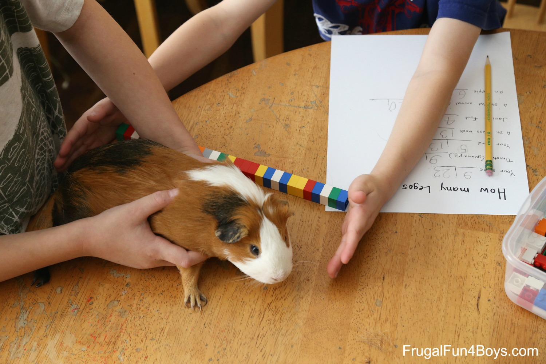 LEGO Math Activities for First Grade