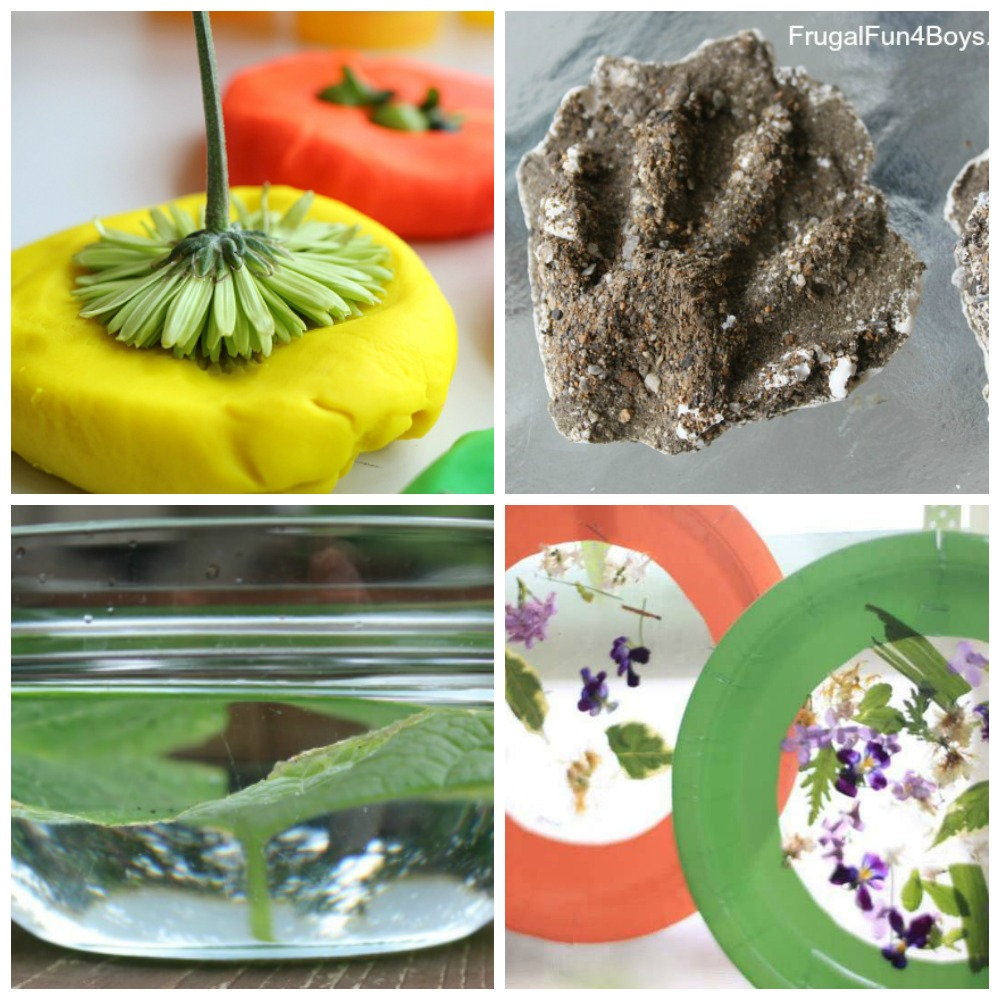 Summer Science for Kids! 15 Projects and Activities