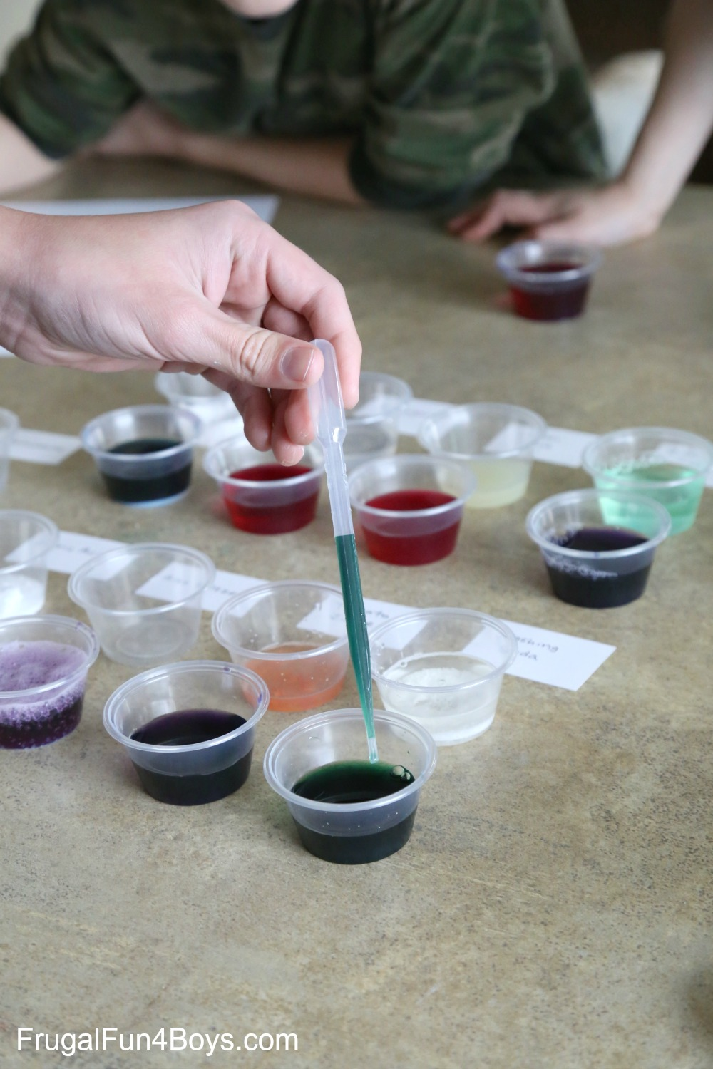 Kitchen Chemistry: Red Cabbage Acid/Base Indicator