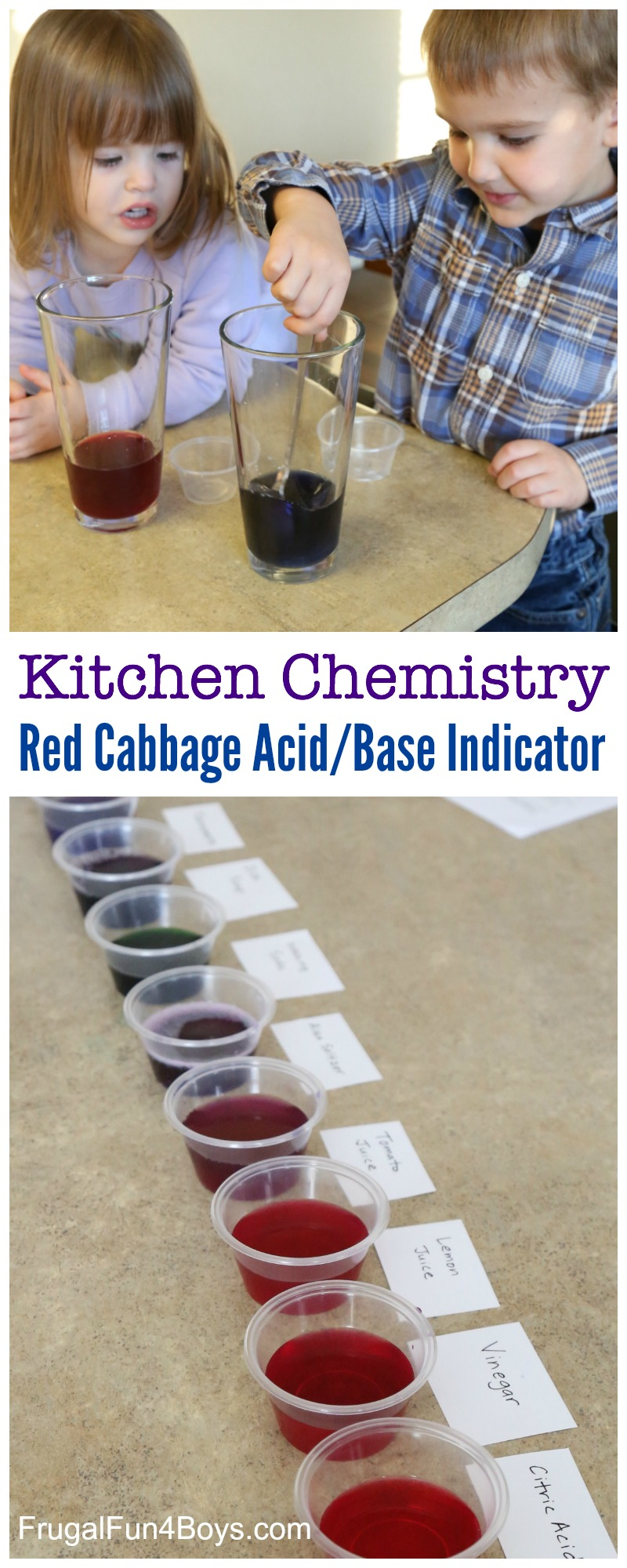 Kitchen Chemistry: Red Cabbage pH Indicator