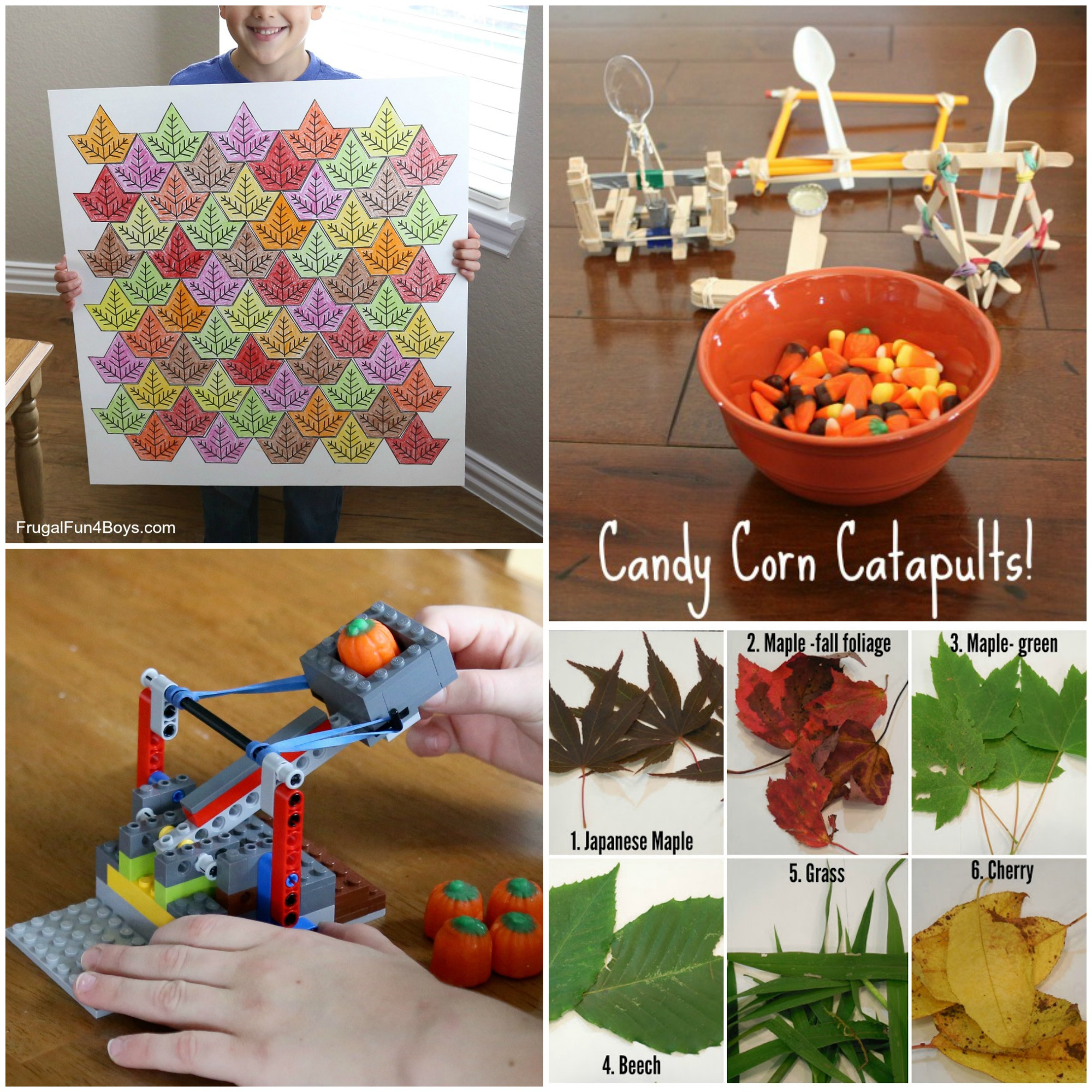 Fall STEM activities - build a candy pumpkin catapult, leaf tessellations, leaf science.