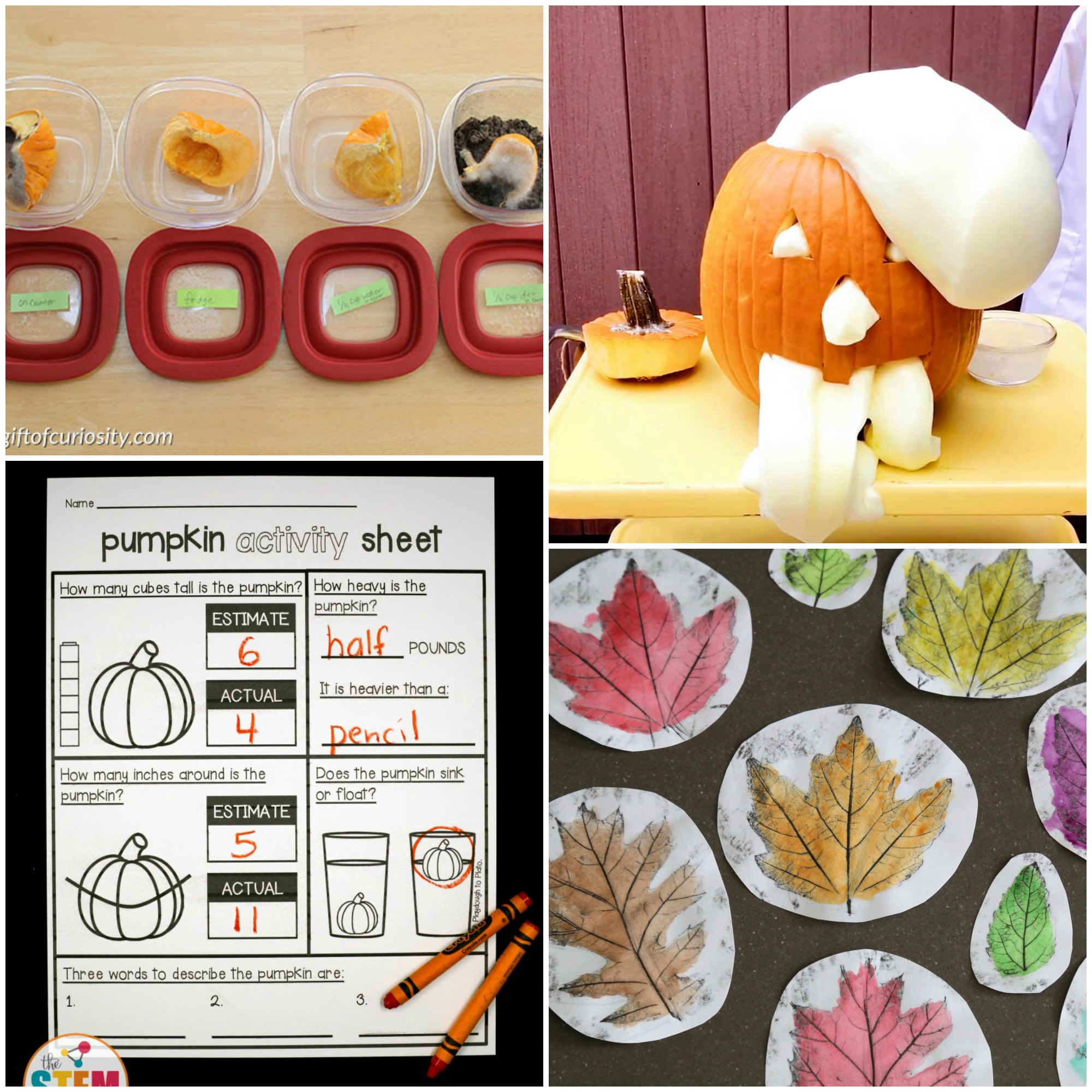 Fall Stem Activities That Are Engaging And Fun Frugal Fun For Boys And Girls