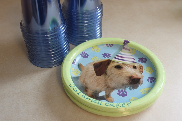 Pet Show Themed Birthday Party
