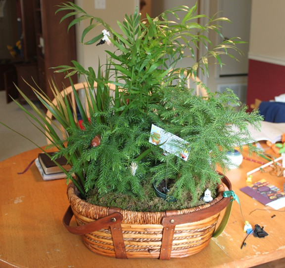 """Our """"Lego"""" Gift Plant"""