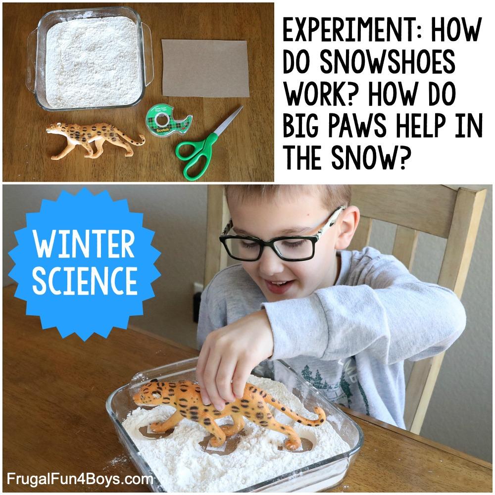 Snowshoe Science Experiment