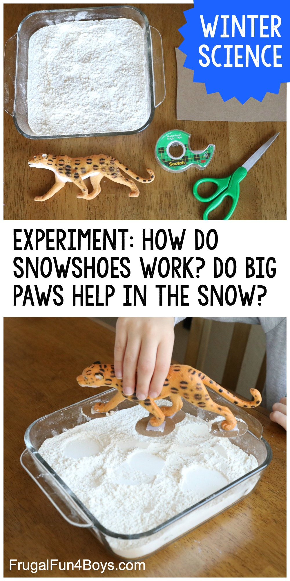 How Do Snowshoes Work Winter Science Experiment