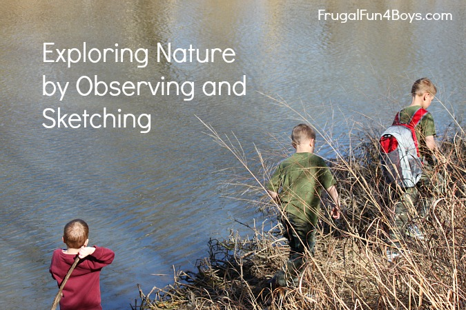 Exploring Nature with Kids by Observing and Sketching