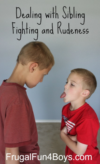 Dealing with Sibling Fighting and Rudeness