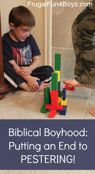 Biblical Boyhood:  Putting an End to Pestering