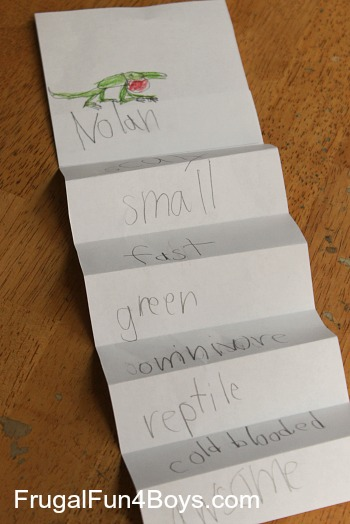 Activities for Learning about Adjectives