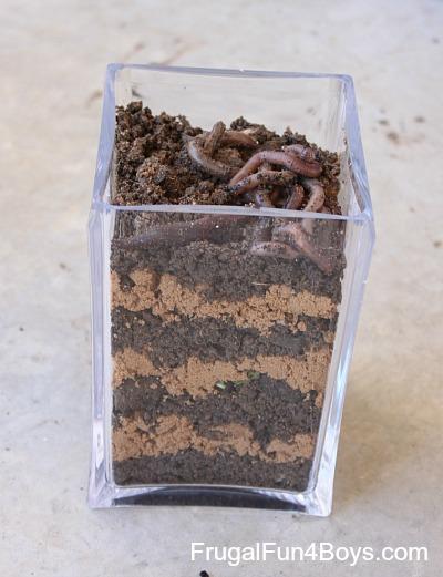Worm Observation Jar