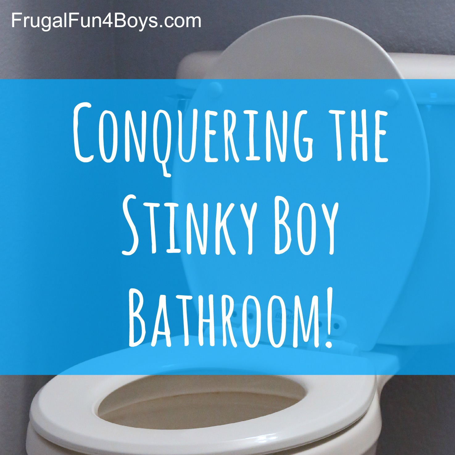 Conquering The Stinky Boy Bathroom   Ideas For Getting Rid Of The Lingering Pee  Smell!