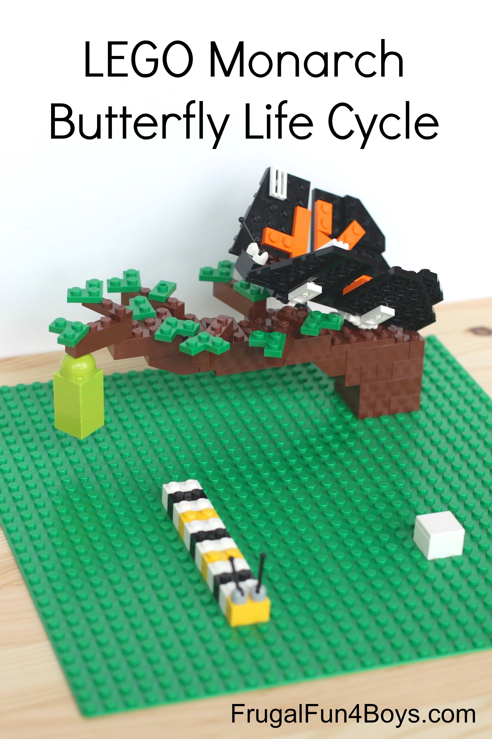 Build the Monarch Butterfly Life Cycle with LEGOs