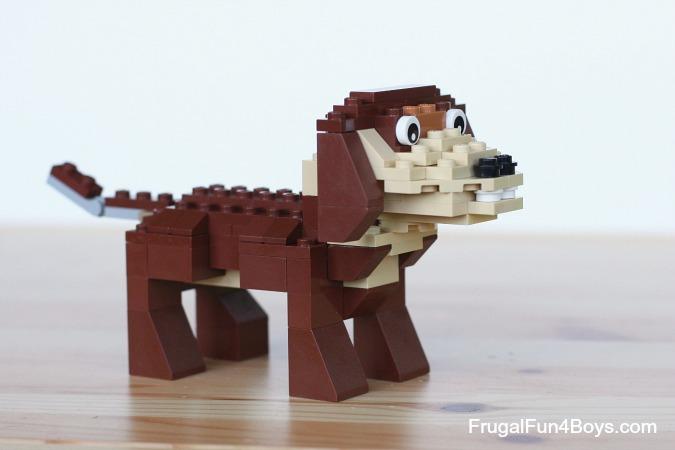 Small Brick Looking Dog