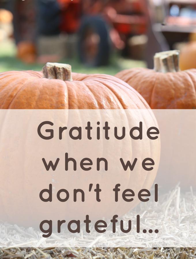 Gratitude When We Don't Feel Grateful…