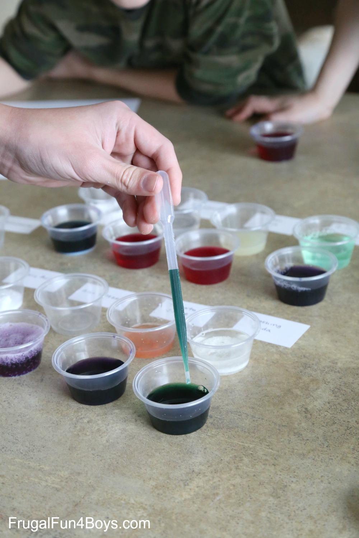 Kitchen Chemistry: Red Cabbage Acid/Base Indicator