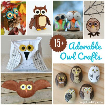 15+ Adorable Owl Crafts to Make with Kids