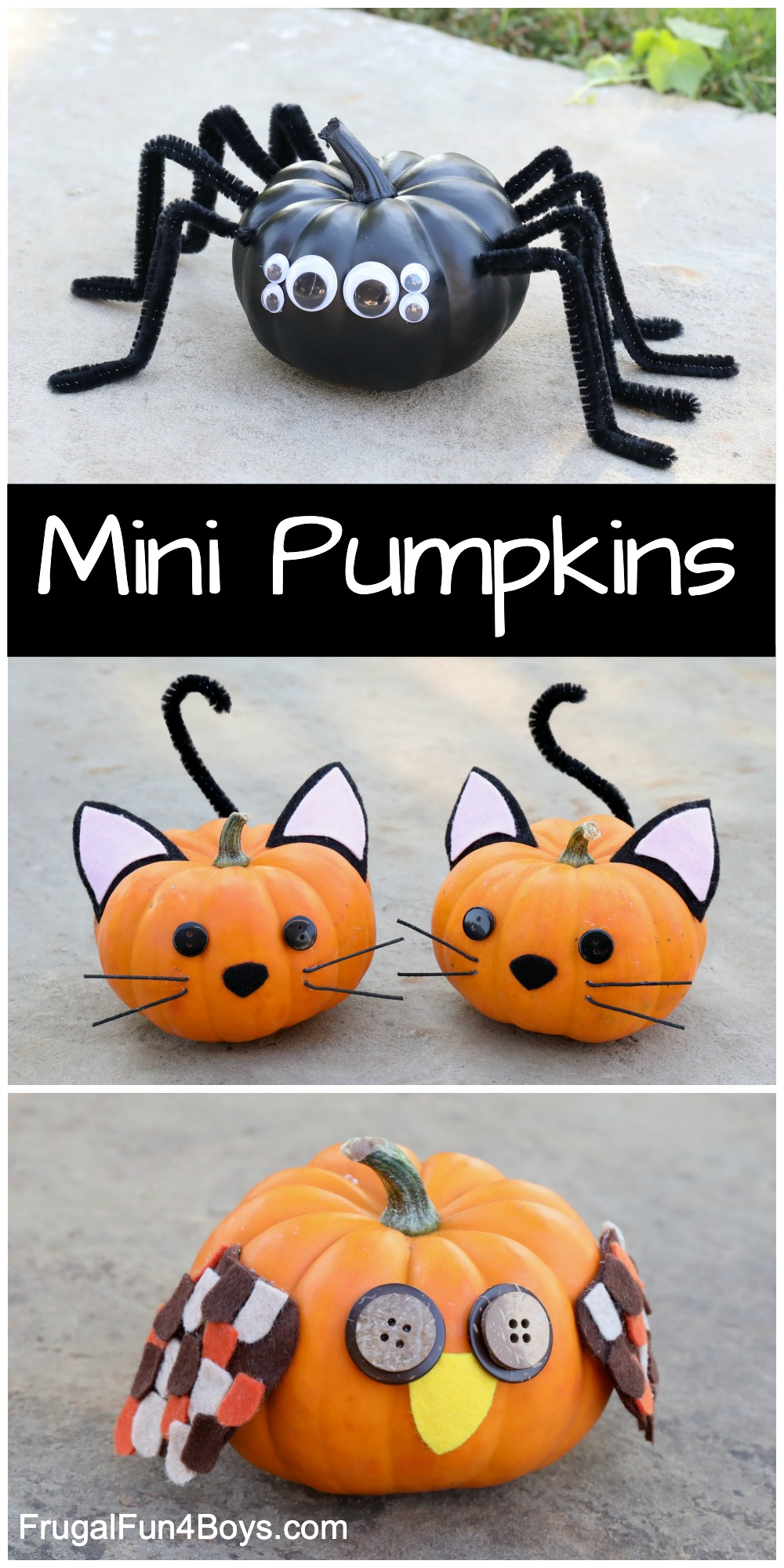 mini pumpkin decorating ideas - spider, cat, owl