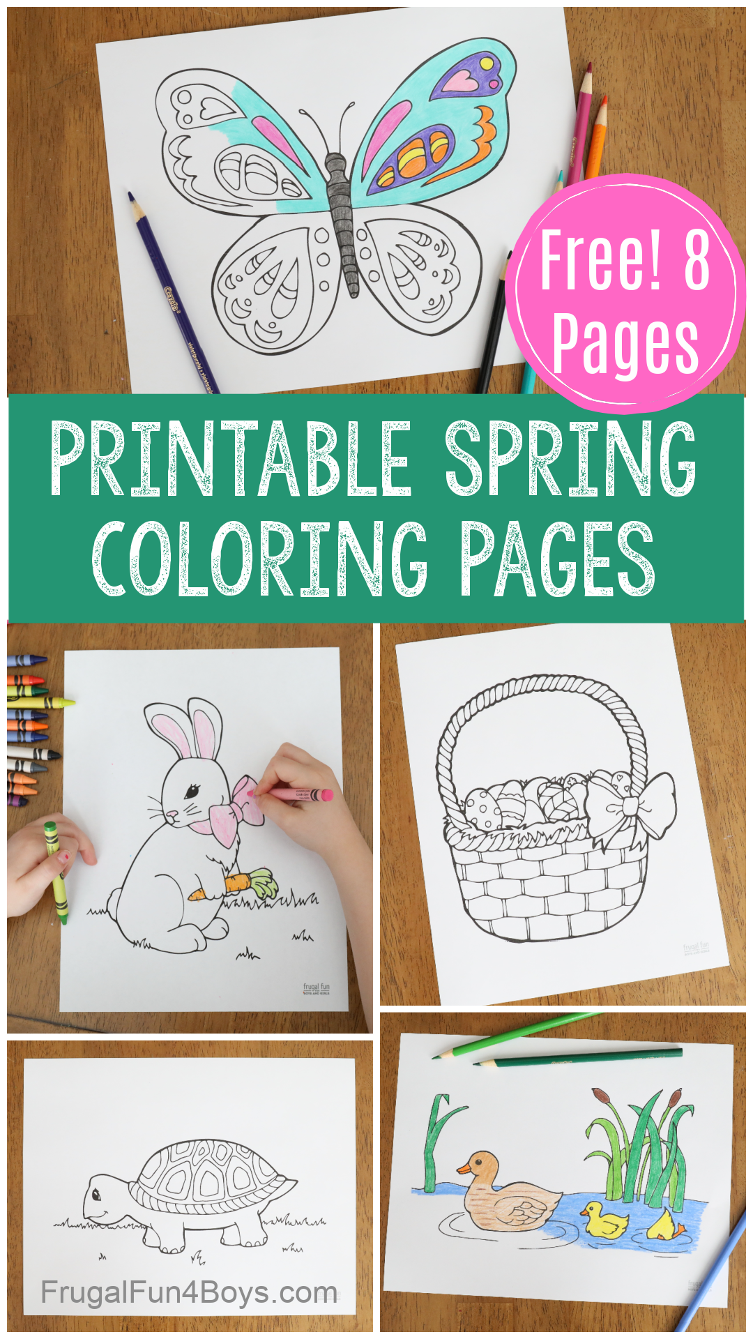 spring coloring pages - butterfly, turtle, bunny, ducks